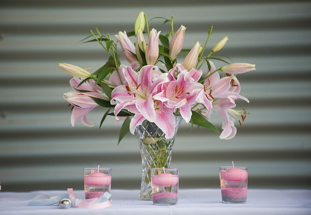 hoa ly cam binh dep nhat